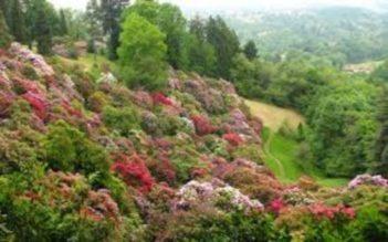 Burcina: prossimo sito piemontese candidato al Patrimonio UNESCO?