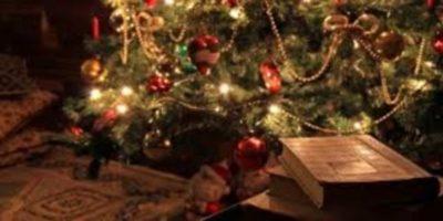 Libri sotto l'albero – A Natale regala un romanzo!