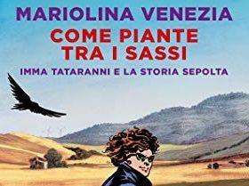 Come piante tra i sassi – Mariolina Venezia